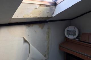 雨漏りで壁が濡れて黒カビが生えてきた…